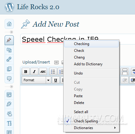 Spell Check in IE9