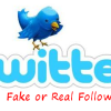 Find out How Many Fake Followers you have on Twitter