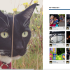 Instagram App for Windows 8- InstaPic [Review]